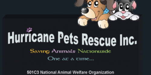 Hurricane Pet Rescue